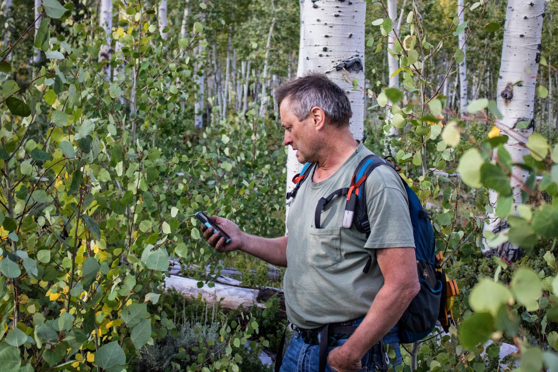 Paul Rogers of the Western Aspen Alliance, in Pando.